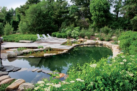 Vineyard style magazine drawing board the design build and mechanics of a natural pool for Natural swimming pools a guide to building